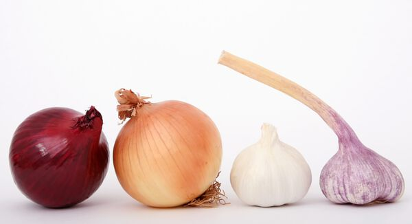 Vegetables for Dry Storage — Onion and Garlic